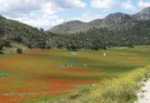 Grazalema Natural Park