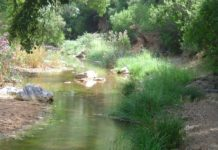 Sierra de Hornachuelos Nature Park