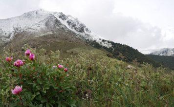 Sierra Subbeticas Natural Park