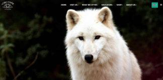 Lobo Wolf Park