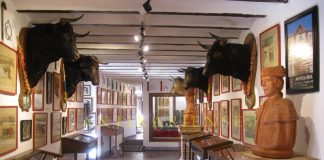 Bullfigting Museum of Antequera