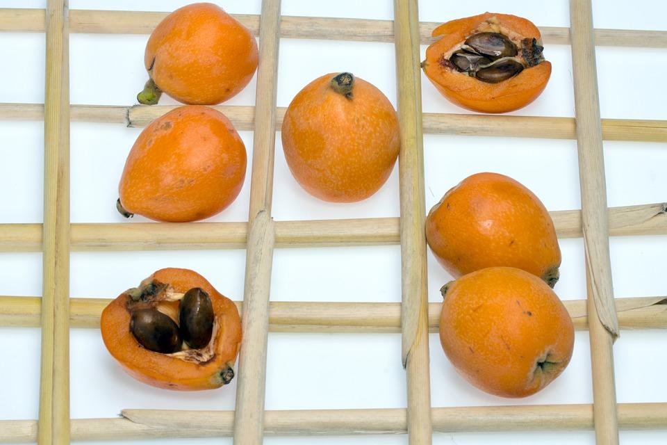 Nispero Fruit and Seeds