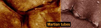 Martian tubes